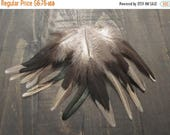 CLOSING OUT SALE 15 Multi Colored Rooster Saddle Feathers ~ Cruelty Free
