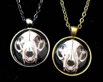 Cat skull pendant