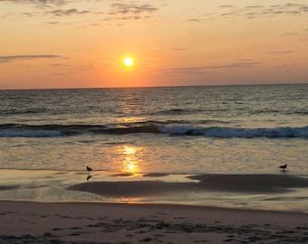 Lavallette Bird Sunrise II