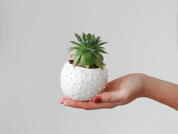 handmade ceramic petit succulent planter flower pot flowers. Black Bedroom Furniture Sets. Home Design Ideas
