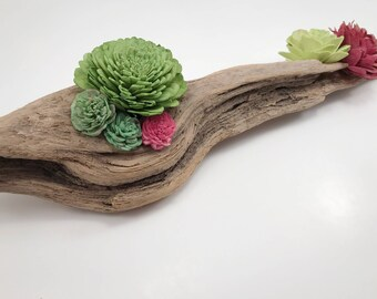 Driftwood succulent sola wood flower arrangement; home decor, flower arrangement, sola wood flower