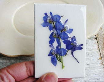 Blue Larkspur Magnet, Real Flower, Floral Art Magnet, Canvas Art, Tiny Art, Magnet Art