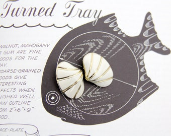 Vintage Earrings // White Sea Shell Clip On Earrings