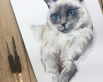 CUSTOM CAT PAINTING, Custom pet portrait, watercolor, cat portraits, siamese cat, gift, custom pet painting, cat, pet portrait, Ninja Heevel