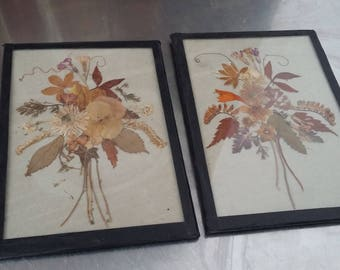 Pair of Vintage Small Frames Dried Flowers
