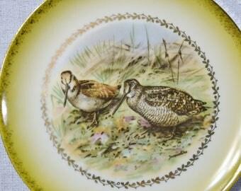 Vintage Imperial Salad Plate Plover Bird Porzellanmalirea Parbus Germany Double P Yellow Gold Rim PanchosPorch