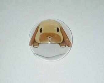 X 1 Rabbit 20mm glass Cabochon