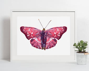8x10 print, digital print, digital download, printable art, insect poster, instant download, nursery decor, butterfly wall art, nature print