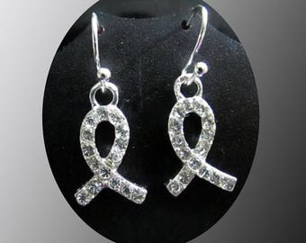 Lovely and Meaningful Awareness Earrings