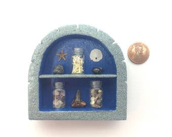 REAL  Fossil/Specimen Display - TRILOBITE AMMONITE Shark Tooth, bones, starfish, sand dollar, shells, rocks