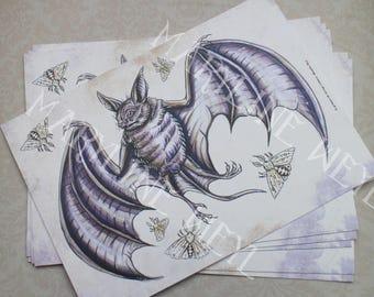 "postcard ""the book of strange creatures"" - bat"