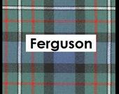 Mini Stocking in Ferguson Tartan