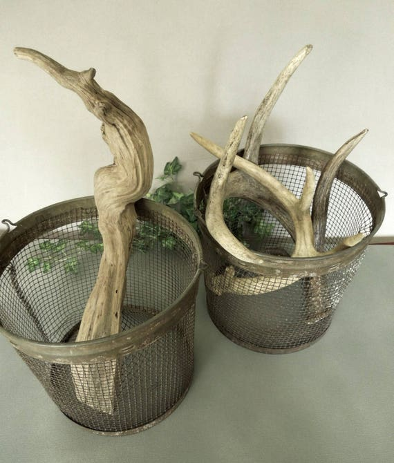 Metal Minnow Trap Mesh Bucket FREE SHIP Rustic Primitive