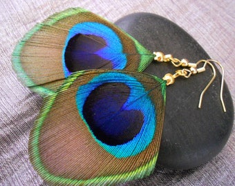 Parrot green and gold plated feather earrings.