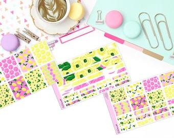 PINK LEMONADE KIT Paper Planner Stickers!