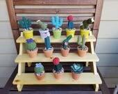 Assorted mini Crochet cacti