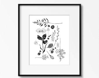 Flora 1 - Black and White Art Print Botanical Illustration