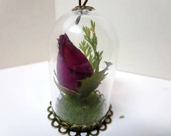 June Birthday Gift for Her -Birth Flower Necklace ,Rose Necklace ,Real Flower Jewelry, Romantic Gift, Real rose necklace -Terrarium Necklace