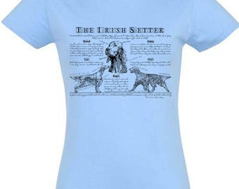 Round-necked T-shirt for women with Irish Setter illustration