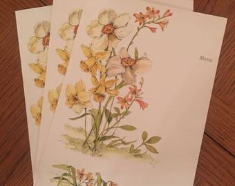 Vintage floral folding post cards (8)