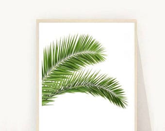 Botanical Art Print, Minimalist Poster, Palm Tree Print, Palm Leaf, Leaf Print,  Instant Download, Home Decor,   Wall Decor
