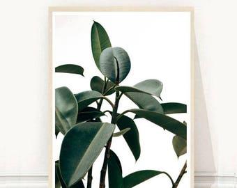 Tropical Plant Print, Leaves Print, Botanical Print, Minimalist Art, Printable Art, Wall Art, Digital Download, Wall Decor