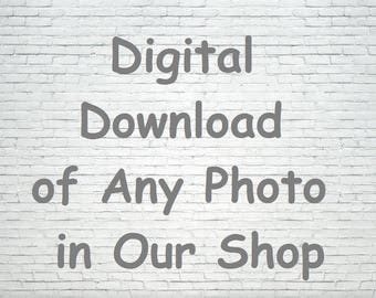 Digital Download Any Photo in this Shop. Custom Download, Instant Download