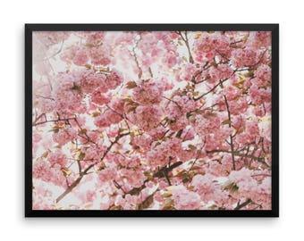 Cherry Blossoms Photography Print | Wall Art | Pink Flowers | Nature | Botanical Art | Art Prints | Large Wall Art | Floral Wall Decor