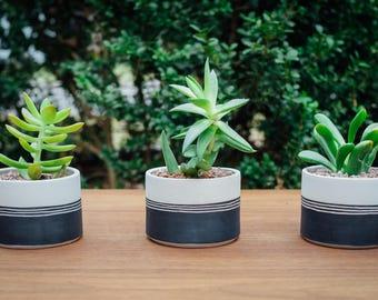 Ceramic Planter / Bare Clay & Black Underglaze With Carving