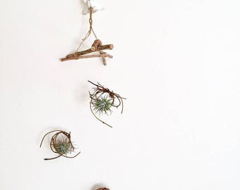 Air Plant Triangle Hanger