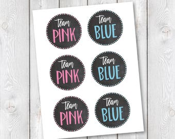 """Team Pink/Team Blue Printable Tags 