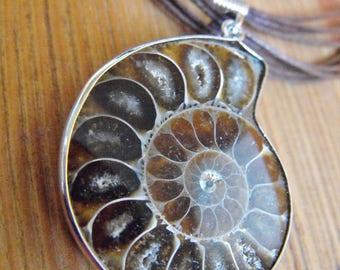 Ammonite Fossil Cord Necklace