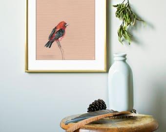 Tanager Bird print | Bird Art Print | Wildlife Art Print | Outdoor Gift | Bird Decor | Bird Watching | Nursery Bird Print | Modern Wall Art