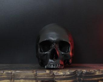 Jett - Jawless Matte Black Full Scale Life Size Half Jaw Realistic Faux Human Skull Replica / Art / Ornament / Home Decor
