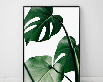 Monstera, Monstera Leaf Print, Monstera Deliciosa, Monstera Print, Greenery, Leaves, Green Monstera Print, Tropical Leaf, Tropical Leaves