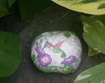 Painted Rock Hummingbird