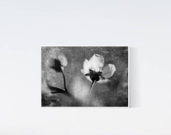 5x7 floral print - Flower prints - black and white photography - dark artwork, wall art decor, living room art, bedroom, flowers print