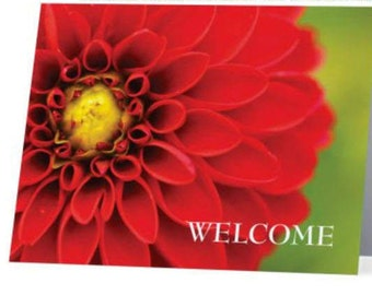 AirBNB, VRBO, Homeaway Owners/ Hosts:  Guest Welcome Cards