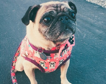 star Pink Blue Pug cotton fabric Dog harness (Available intwo colors)-adjustable-strap-velcro-female male dog harness-puppy harness-pet gift