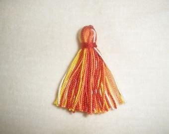 Multicolored set of ten tassels/PomPoms