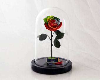 Beauty and the Beast Rose (Small), Enchanted Rose, Rose in glass dome, Forever red rose, Rose in Glass, preserved rose, preserved flower