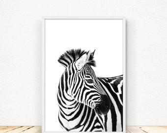 Zebra Print Wall Art, Safari Decor, African Animal Photo, Black And White,