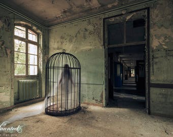 Lady Blanche Cage (photography)