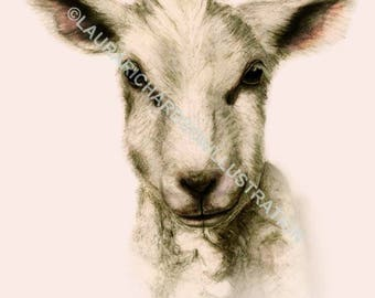 Lamb, Illustration, Fine Art print, Giclee print, A4 print