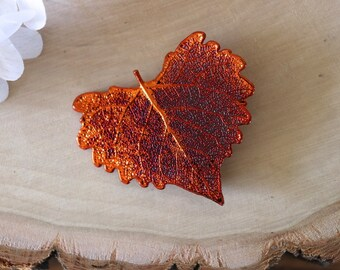 Cottonwood Leaf Brooch Copper, Hair Pin, Cottonwood Leaf Pin, Real Leaf, Copper Leaf, Nature Pin, Hat PIn, Organic Brooch, BROOCH34