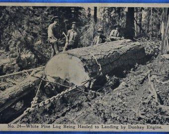 White Pine Log Donkey Engine McCloud River Lumber Co California Early 1910s Postcard
