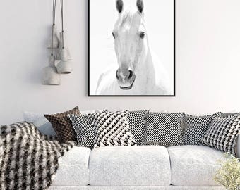 White Horse Photograph in Black and White   White Background Animal Art   Vertical Wall Art   Physical Print