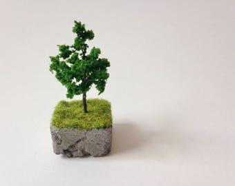 Tiny tree on concrete with grass, slice of earth, miniature landscape, tiny decor, fairy garden, eco decor, green