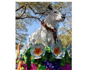 Mardi Gras Boeuf Gras Photo - Fatted Ox Float - New Orleans Photography - Carnival Bull Print - theRDBcollection - Renee Dent Blankenship