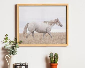 Art Printable - Horse Photography - Modern Art - Animal Art Print - Digital Art - White - Fine Art Photography - Horizontal - SKU:4665